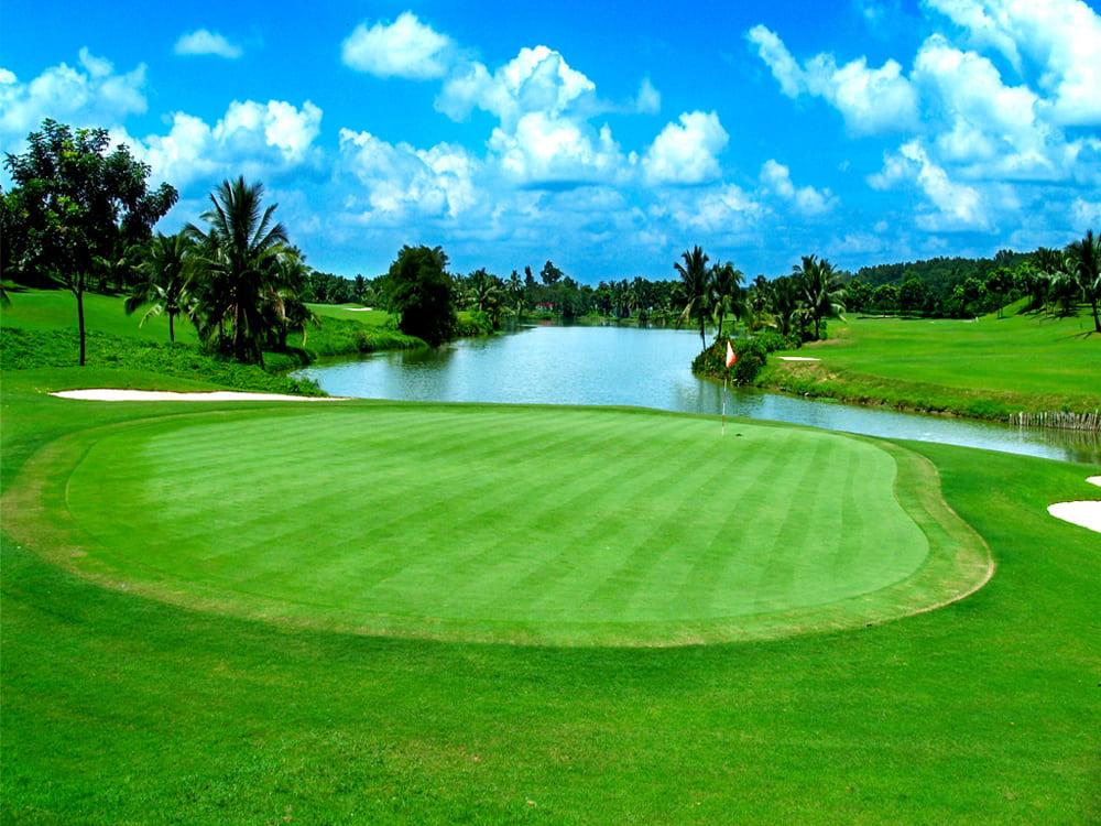 Dự án trồng cỏ sân golf Đồng Nai