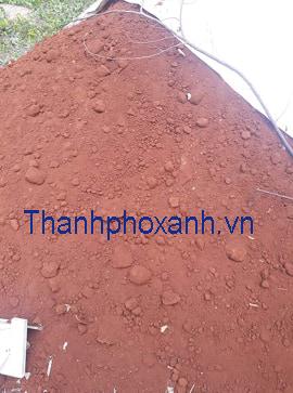 Cung cấp  đất thịt , đất đỏ Bazan trồng cây, trồng rau tại tp HCM