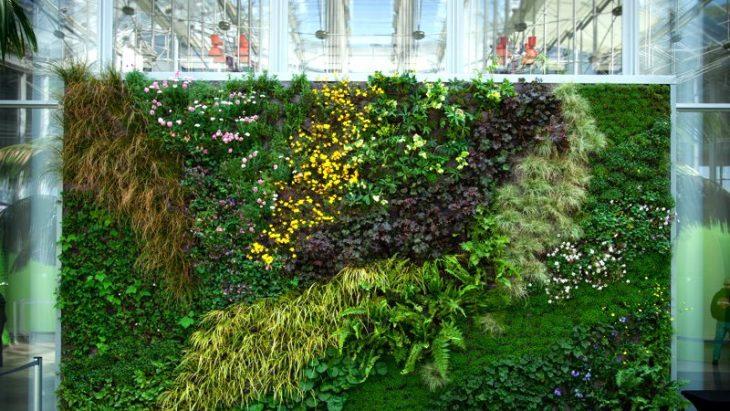 Thi công vườn xanh đứng, vườn treo tường